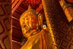 Buddha statua w Ayutthaya Fotografia Royalty Free