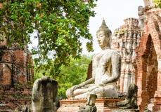 BUDDHA statua W ruinach Fotografia Royalty Free