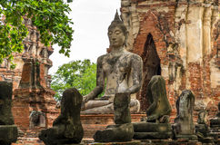 Buddha statua w Wacie Mahathat, rujnująca świątynia w Ayuthaya, Tajlandzkim Obrazy Royalty Free