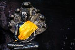 Buddha statua z naka behind Zdjęcia Stock