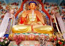 Free Buddha Statue Stock Image - 28970571