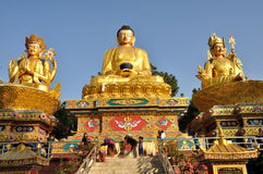 Free Buddha Statue Royalty Free Stock Images - 30019359