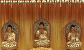 Buddha statue. Three golden Buddha statue in Malaysia Royalty Free Stock Photography