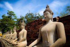 The Buddha statue royalty free stock photo