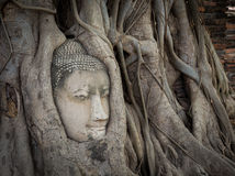 Buddha statue and ancient ruin. Royalty Free Stock Photos