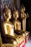 Buddha-Statue auf einem Sockel Stockbilder