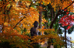 Buddha statue and autumn leaves, Kyoto Japan. Royalty Free Stock Photos