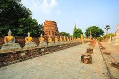 Buddha statue. Ayuttaya, Thailand Stock Photo