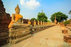 Buddha statue. Ayuttaya, Thailand Royalty Free Stock Photo
