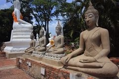 Buddha statue in Ayutthaya historical park Royalty Free Stock Photos