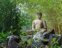 Buddha statue in bamboo forest Royalty Free Stock Photo