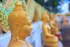 Buddha statue. Bangkok temple color gold wall background Royalty Free Stock Photography