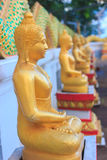 Buddha statue. Bangkok temple color gold wall background Stock Photography
