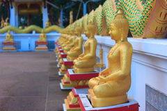 Buddha statue. Bangkok temple color gold wall background Stock Photo