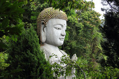 Buddha statue behind the trees. Chin Swee Temple, Malaysia Stock Photo