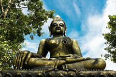 Buddha statue between the bo tree Royalty Free Stock Photography