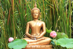 Buddha statue. The buddha statue of buddhist in Thailand Royalty Free Stock Photography