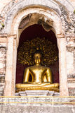 Buddha Statue In Chedi , Wat Chedi Lung Chiangmai Royalty Free Stock Photos