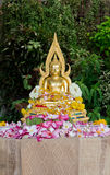 Buddha statue covered with flower petals after being cleansed an Royalty Free Stock Images
