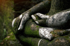 Buddha statue covered by moss in ancient temple Royalty Free Stock Images