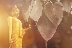 Buddha-Statue, Doppelbelichtung BO treiben Blätter und len Aufflackern stockbilder