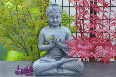 Buddha statue. With flower decorations and maple trees Royalty Free Stock Image