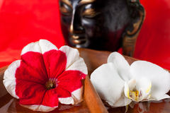 Buddha statue with flowers. An Orchid and Petunia in water in front of a religious statue royalty free stock photo