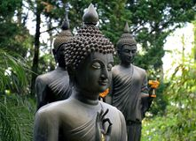 Buddha statue. In the forest. Chiangrai Thailand stock photo