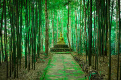 Buddha statue in forest. Stock Photos