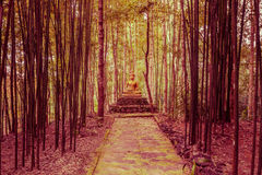 Buddha statue in forest. Stock Images