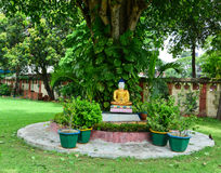 Buddha statue at the garden of temple in Agra, India.  Stock Photo