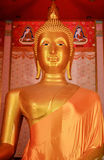 Buddha statue is gold and big of faith Stock Image