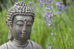 Buddha statue in green garden Stock Images