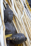Buddha statue in the group of branch wood Stock Images
