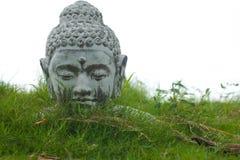 Buddha statue head. Stone Buddha decoration bust in garden grass Royalty Free Stock Image