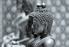 Buddha-Statue im Monochrom Stockfoto