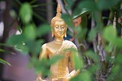 Buddha-Statue im siamesischen Tempel Stockbilder