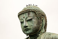 Buddha-Statue in Kamakura, Japan lizenzfreie stockfotos