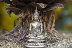 Buddha Statue. Metal Buddha Statue in nature Stock Image