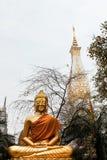 Buddha-Statue mit thailändischer Artpagode lizenzfreies stockbild