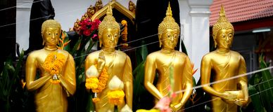 Golden Standing Buddha Statues in a Row. Royalty Free Stock Photos