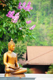 Buddha statue in the nature Royalty Free Stock Photography