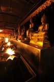 Buddha statue at night , Chiangmai , Thailand Stock Image