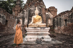 Buddha statue and Novice Stock Images