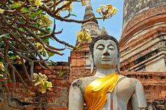 Buddha statue with orange band in Ayutthaya royalty free stock photography