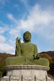 Buddha statue. Statue of Buddha at peace Royalty Free Stock Photos