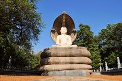 Buddha statue in Polonnaruwa, Sri Lanka Royalty Free Stock Photos