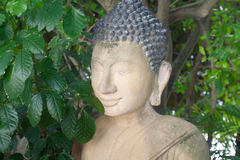 Buddha Statue Portrait close up in Cambodian Temple Green Plants Stock Image