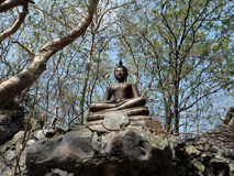 Buddha statue on the rock in the forest Royalty Free Stock Images