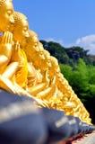 ฺBuddha statue row Stock Photography
